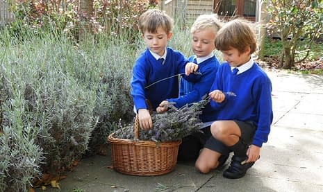 A-Great-Place-to-Grow-Spring-Grove-School-Wye-Kent-Image-15